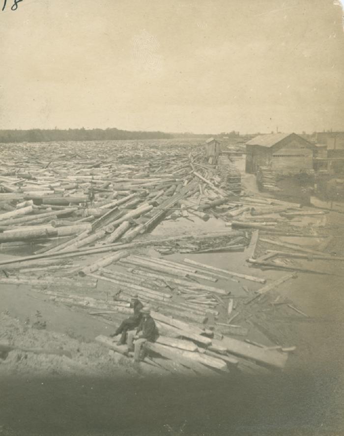 Log jam on Grand River, 1883