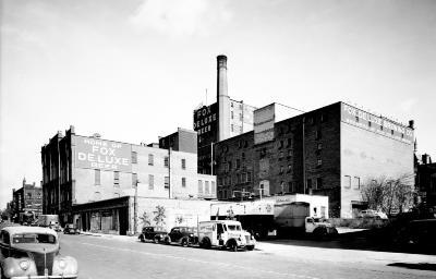 Fox  De Luxe Brewing Co.