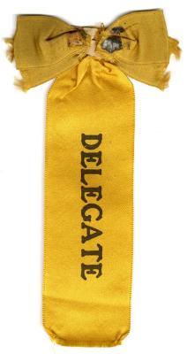 Delegate ribbon