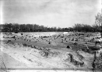 Franklin Park reservoir clearing