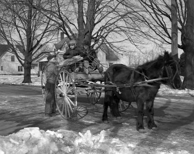 Alto, Michigan, Pony cart and children