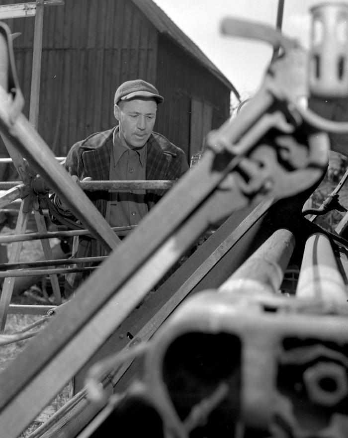 Auction, Farm at Trufant