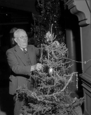 Baar, Peter, City Hall Christmas trees