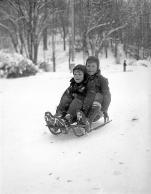 Snow, at John Ball Park