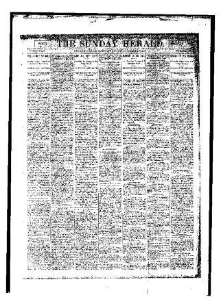 Grand Rapids Herald, Sunday, November 19, 1893