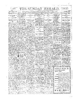 Grand Rapids Herald, Sunday, December 02, 1894