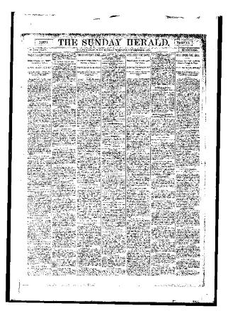 Grand Rapids Herald, Sunday, November 26, 1893